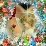 Clara Taranto Profile Picture