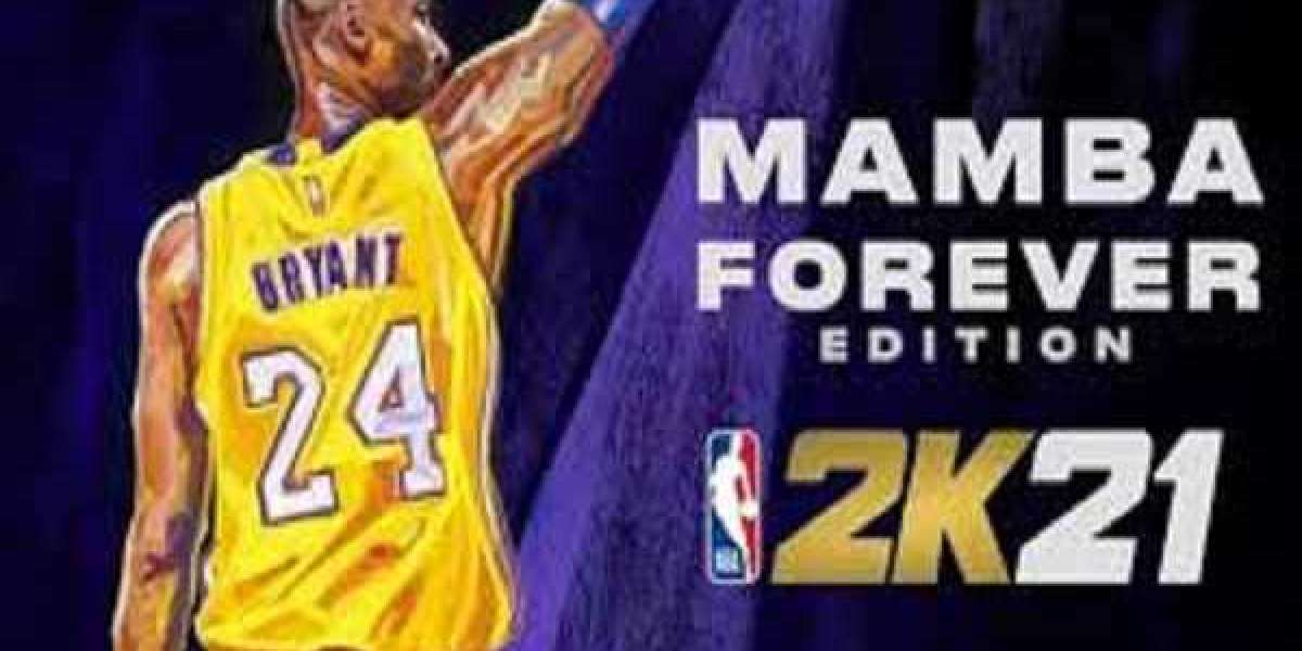 The Guru Stick has been a staple of 2K basketball for years now