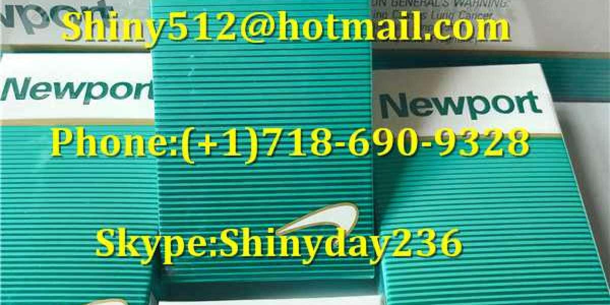 Cheap Newport 100s Free Shipping associated